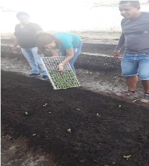 Prefeitura Municipal implanta o Projeto Horta na Escola